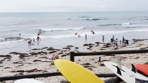 Grommets surfing March round